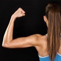 Upper body strength excercise